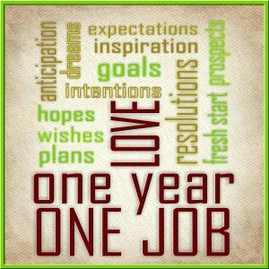 One Year One Job